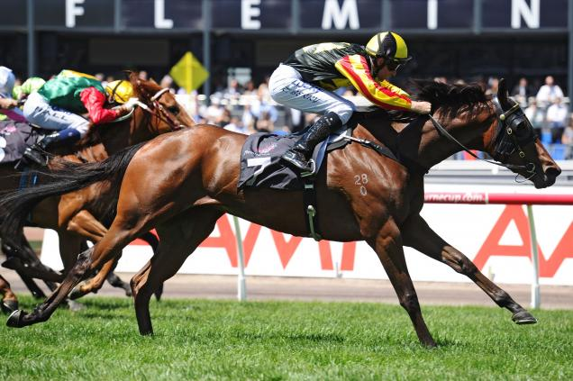 Kirramosa back on track for Cups campaign