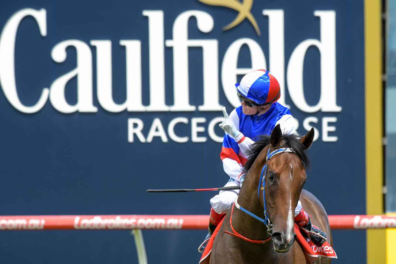 blue diamond stakes form guide