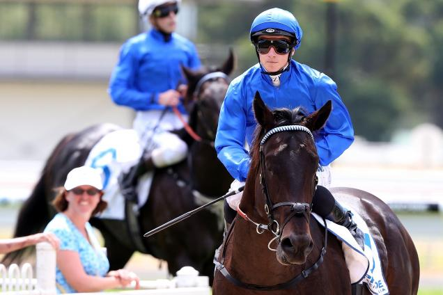 Godolphin attention turns to youngsters