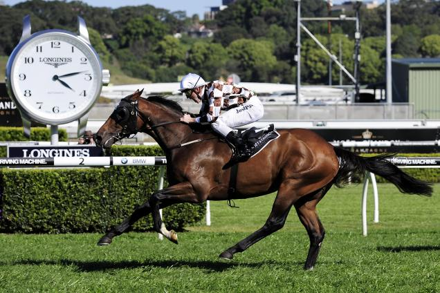Flemington preview - Derby Day
