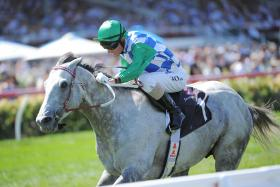 Puissance de Lune is out to defend his P.B. Lawrence crown