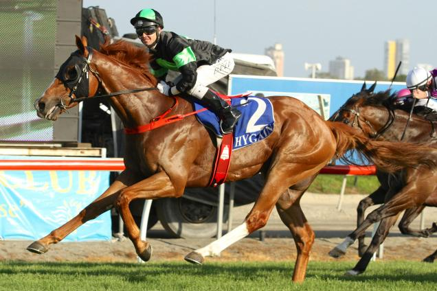 Sir Moments in pleasing Randwick work-out