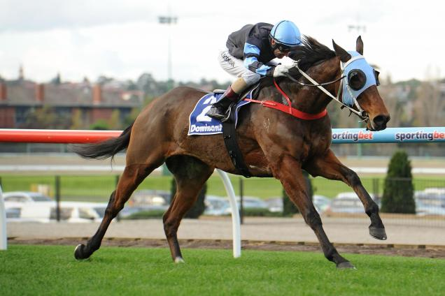 Saturday Moonee Valley preview