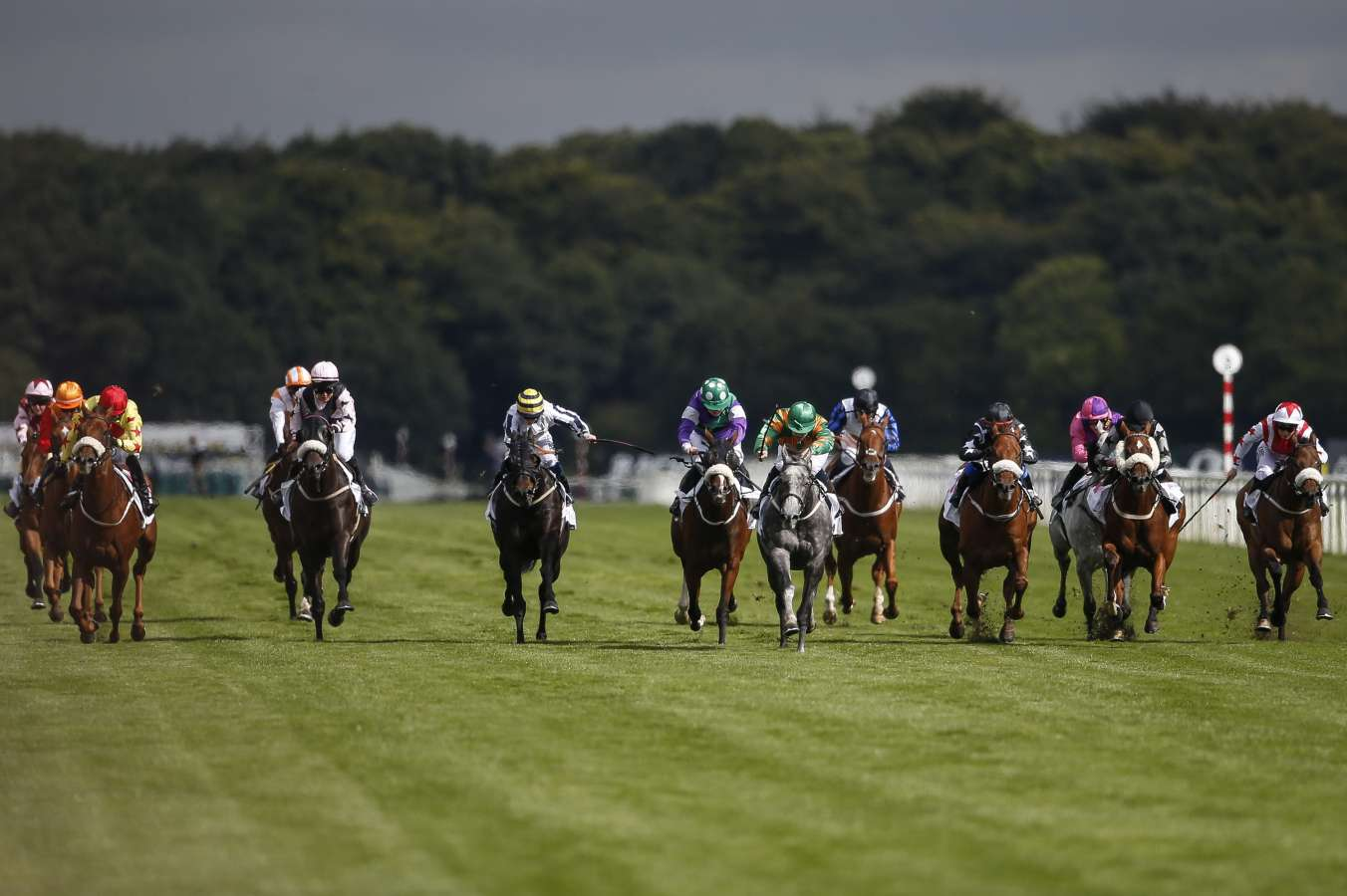 Horse racing canceled in Britain over equine flu outbreak