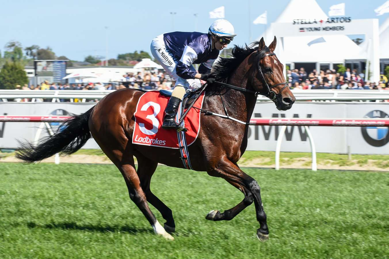 $41 shot Boom Time causes Caulfield Cup upset