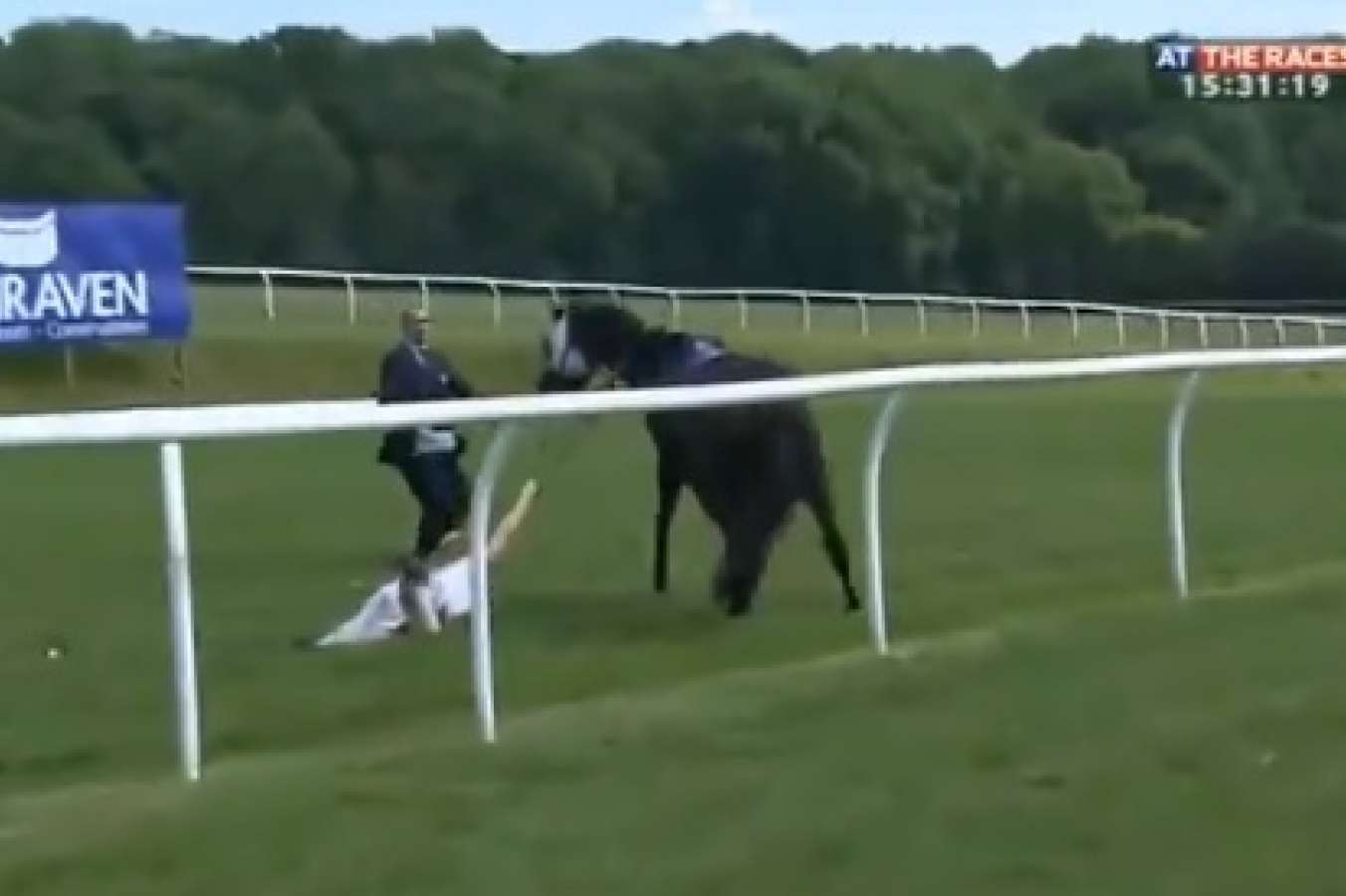 TV presenter Hayley Moore tackles loose race horse at Chepstow course