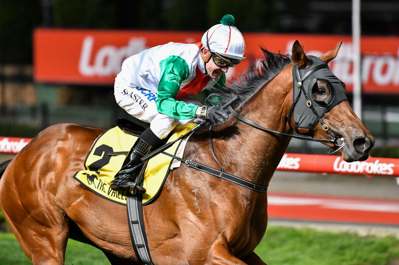 Melbourne Cup field: rivals trainers sweating on Jon Snow fitness