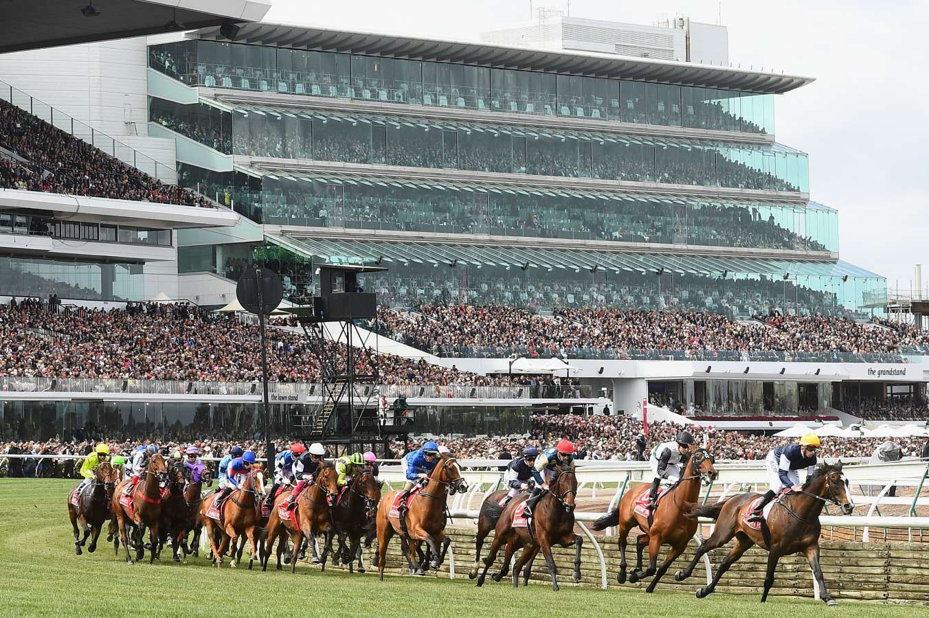 Tragedy at Melbourne Cup as horse The CliffsofMoher put down after injury