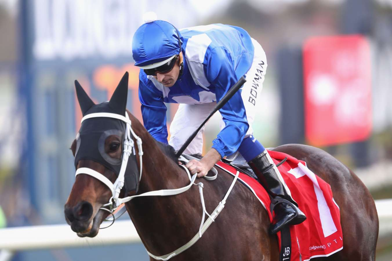 Humidor to take on Winx in Turnbull Stakes