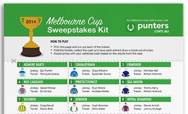 Melbourne Cup 2014 Sweep Kit
