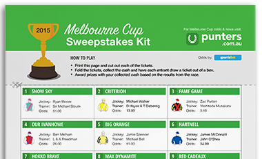 Melbourne Cup Sweep Kit