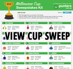 melbourne cup weights 2017 pdf
