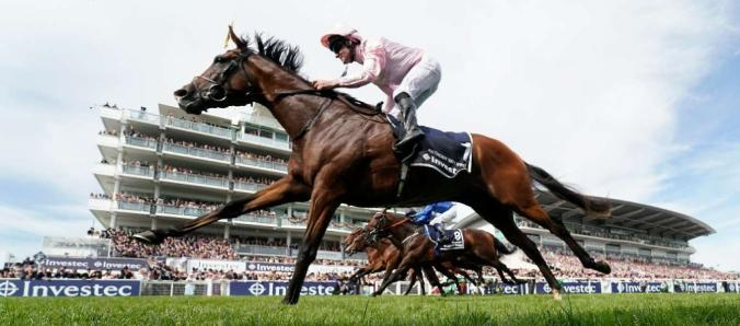 Best horses to bet on melbourne cup online horse racing betting in new jersey