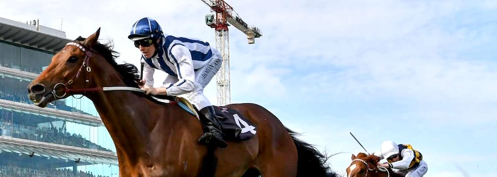 Amelie's Star 2017 Melbourne Cup contender