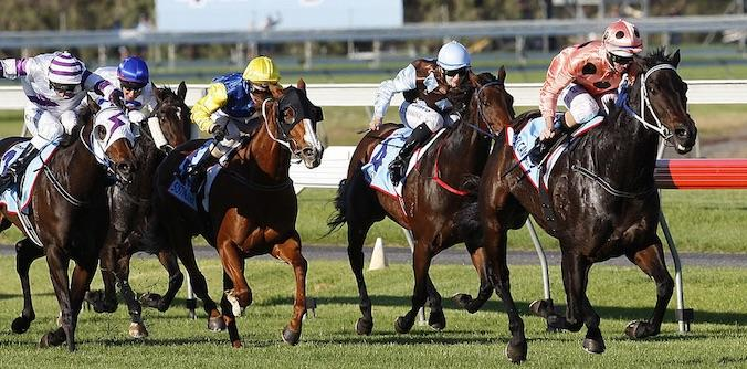 Black Caviar pulling away from her rivals in the 2012 Robert Sangster Stakes