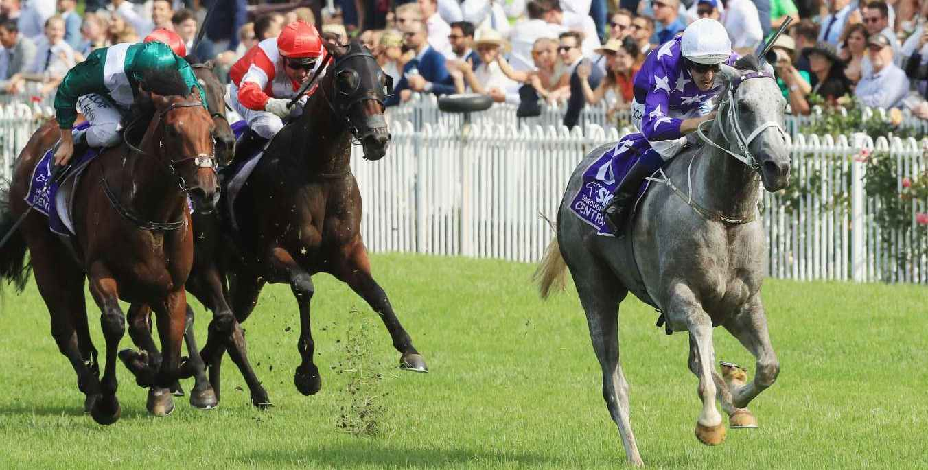 D'Argento takes out the 2018 Rosehill Guineas