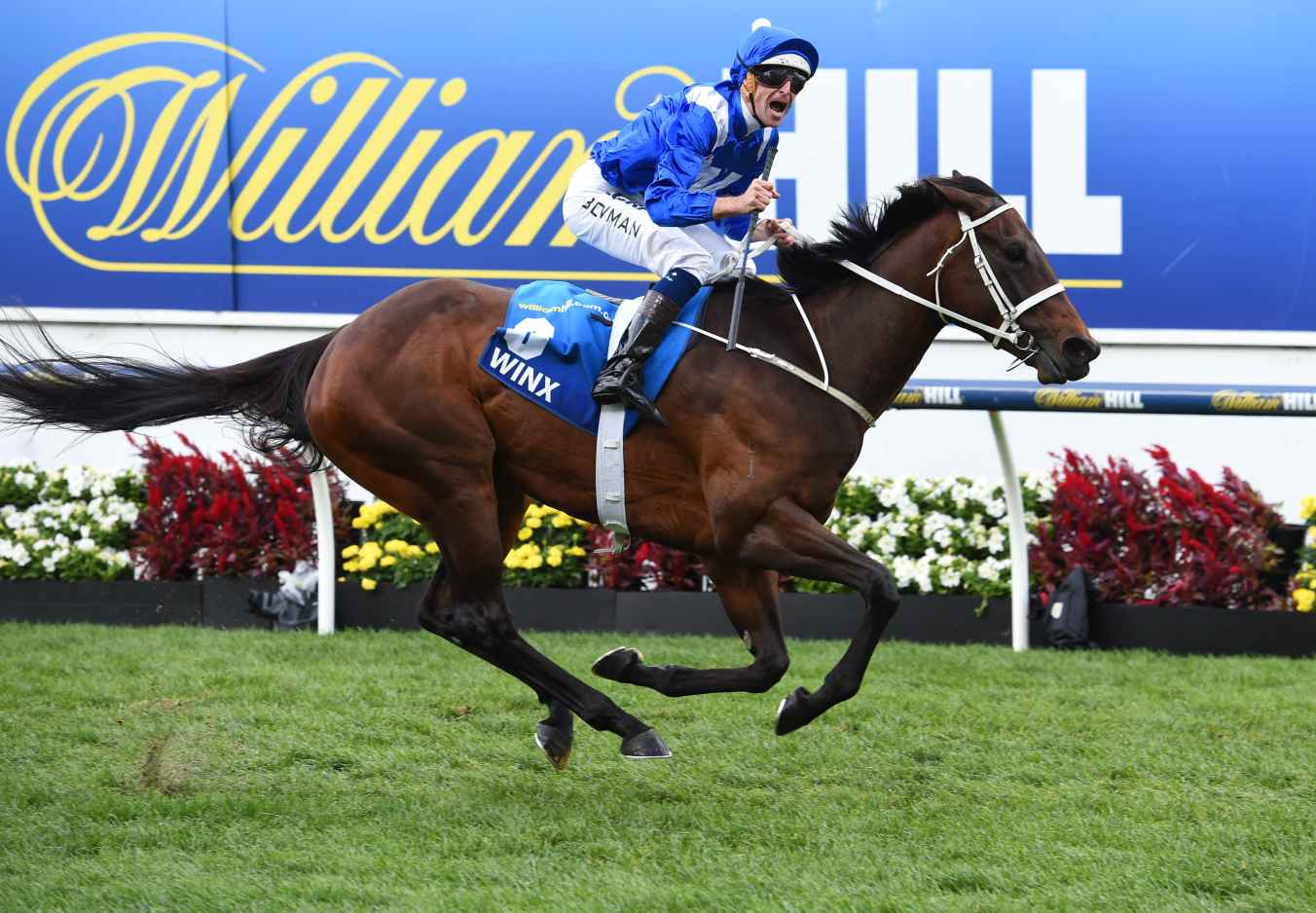 Hugh Bowman riding Winx during Cox Plate Day