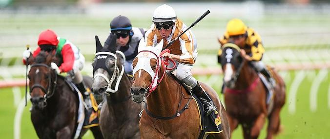 Hana's Goal wins the 2014 All Aged Stakes
