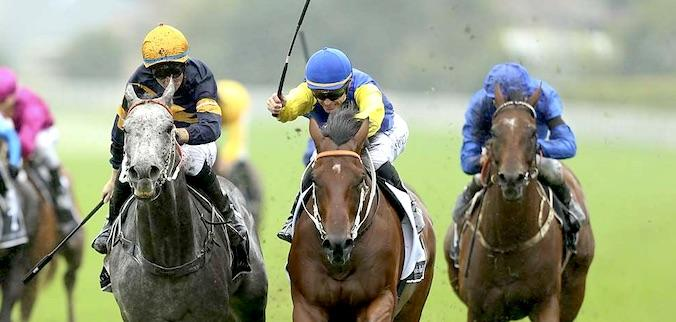 Le Romain out-bobs Chautauqua in the 2017 Canterbury Stakes