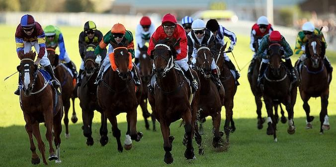 No Wine No Song takes out the 2008 Sydney Cup