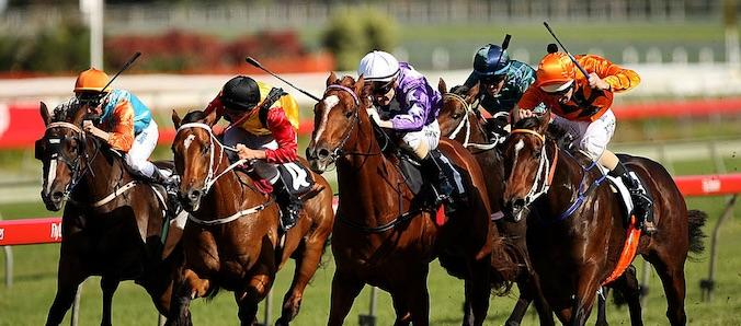 Samantha Miss nabs Sebring to win the 2008 Champagne Stakes