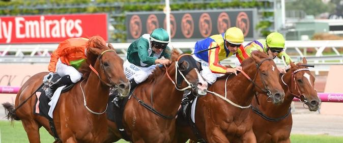 Terravista takes out the 2017 Lightning Stakes