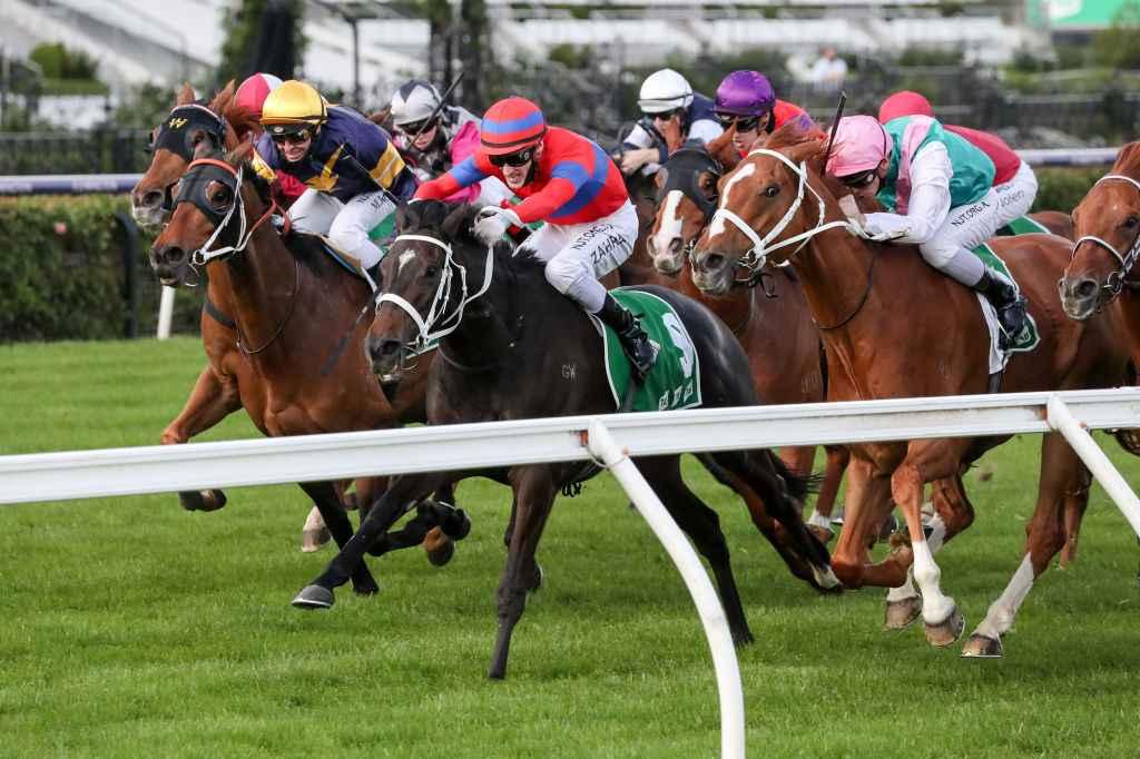 Betting turnbull stakes quincy jones celebration on bet