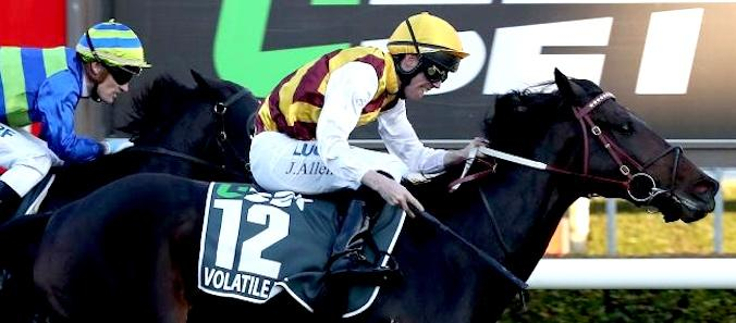 Volatile Mix gives John Allen back-to-back South Australian Derby wins