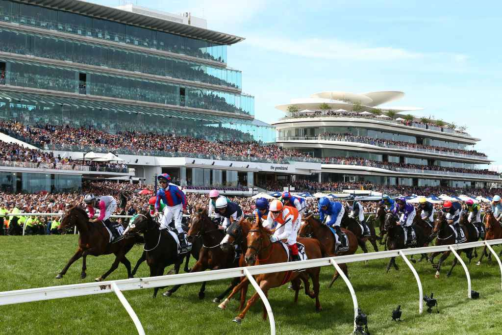 Betting directory melbourne cup winner quicksilver sports betting