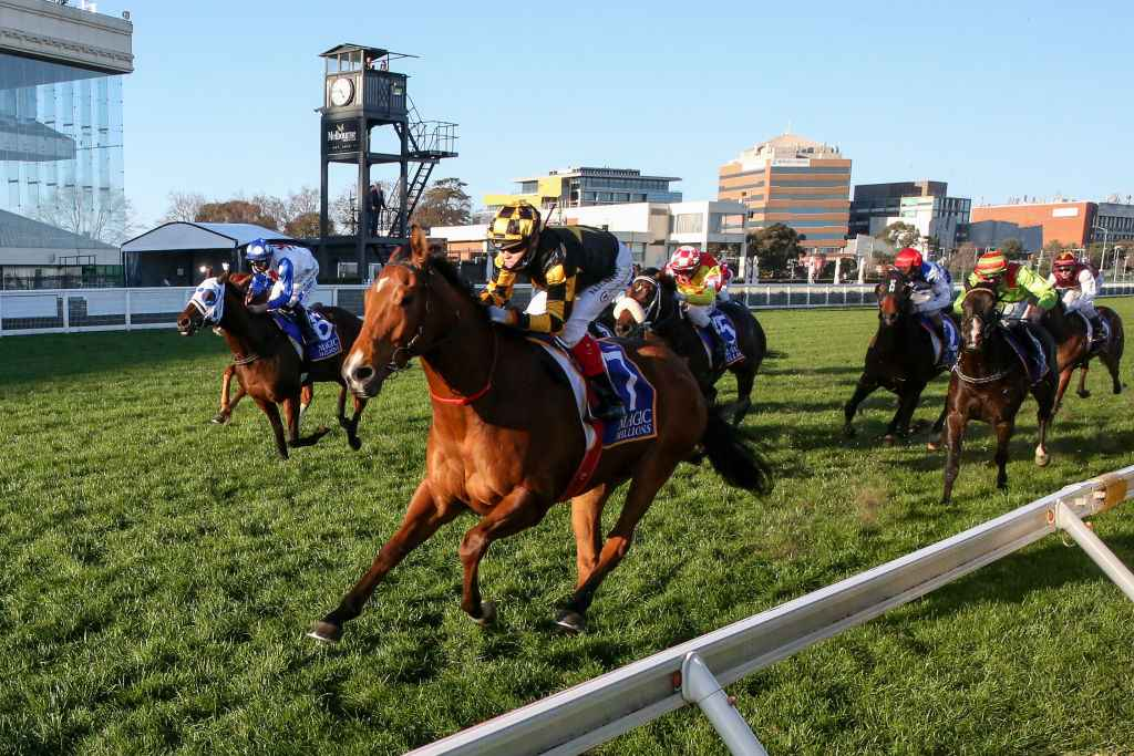Memsie stakes betting line codes other than binary options