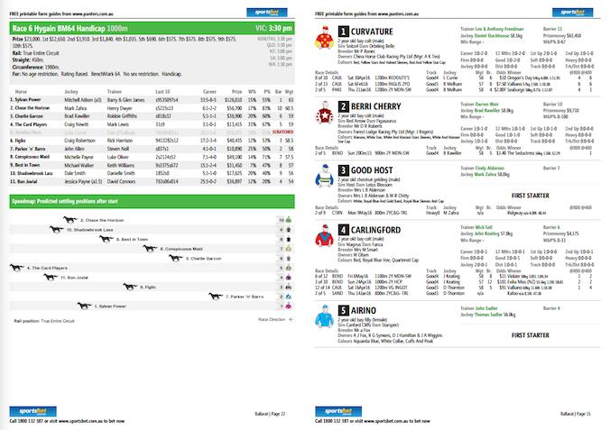 Horse racing betting guides pdf binary options x