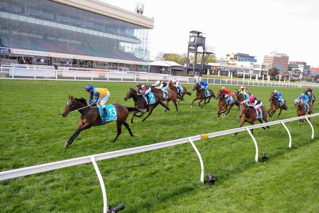 thousand guineas betting on sports