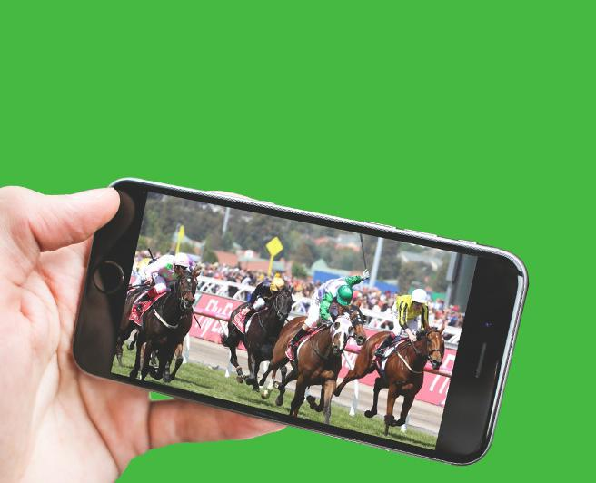 Melbourne Cup Replay