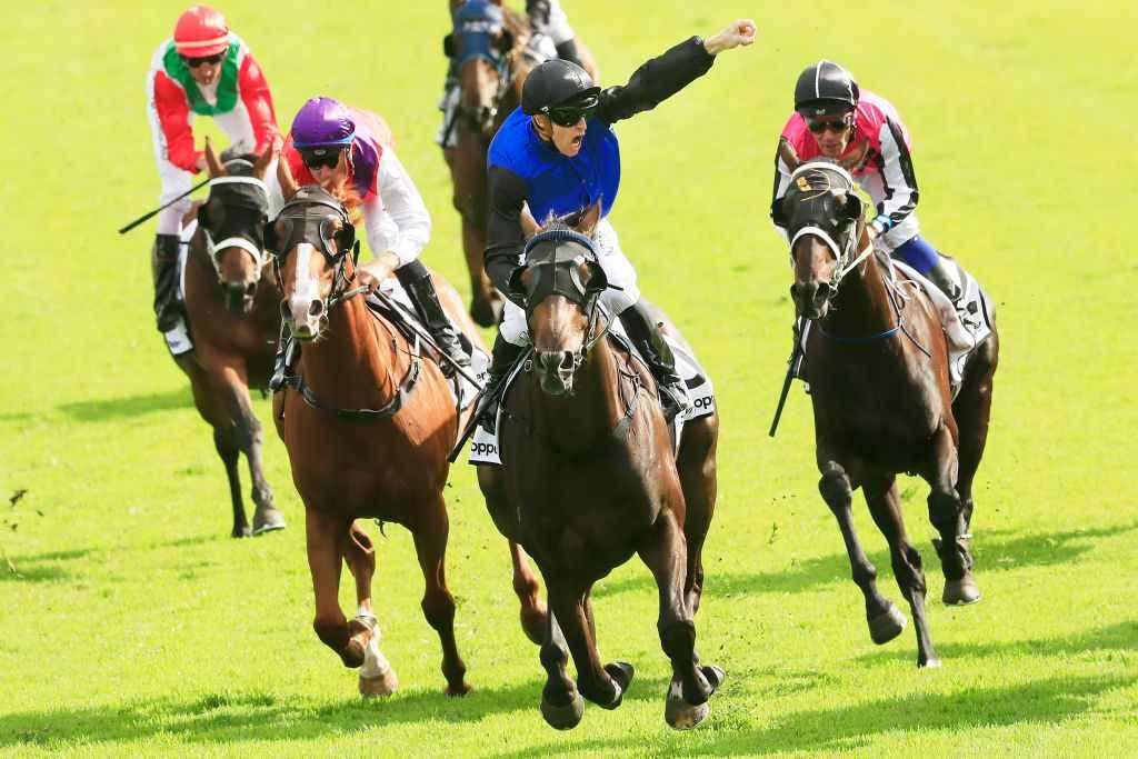 randwick races sports betting online
