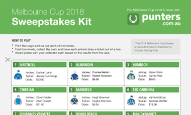 Melbourne cup sweepstakes chart printable