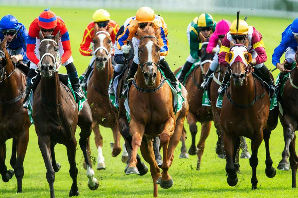Chipping norton stakes betting trends goal sports betting fixture