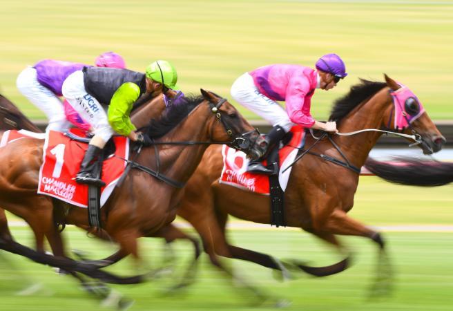 Rough As Guts: Saturday Racing Roughie Picks