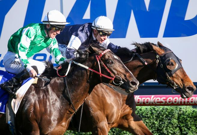 Homesman wins Group One Underwood Stakes