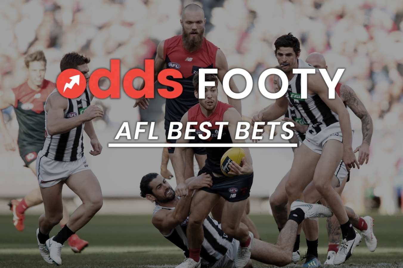 afl round 4 betting tips