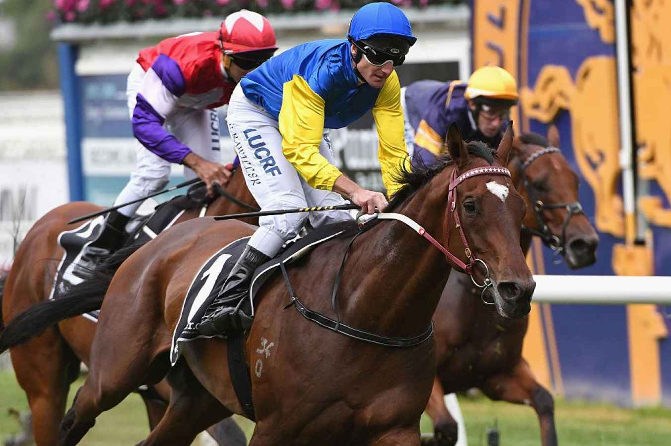 G1 Memsie Stakes preview