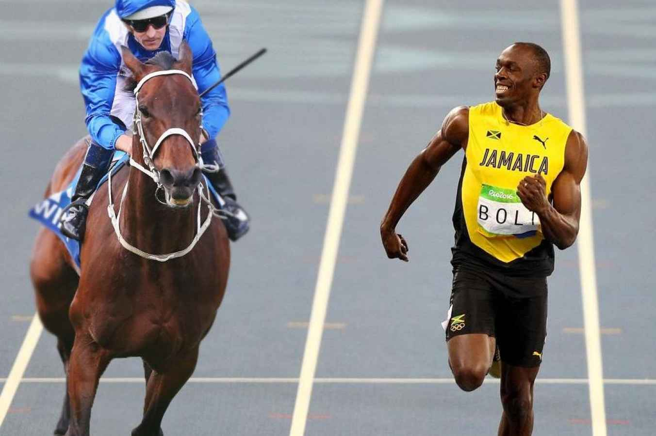 Winx, The Usain Bolt Of Horse Racing