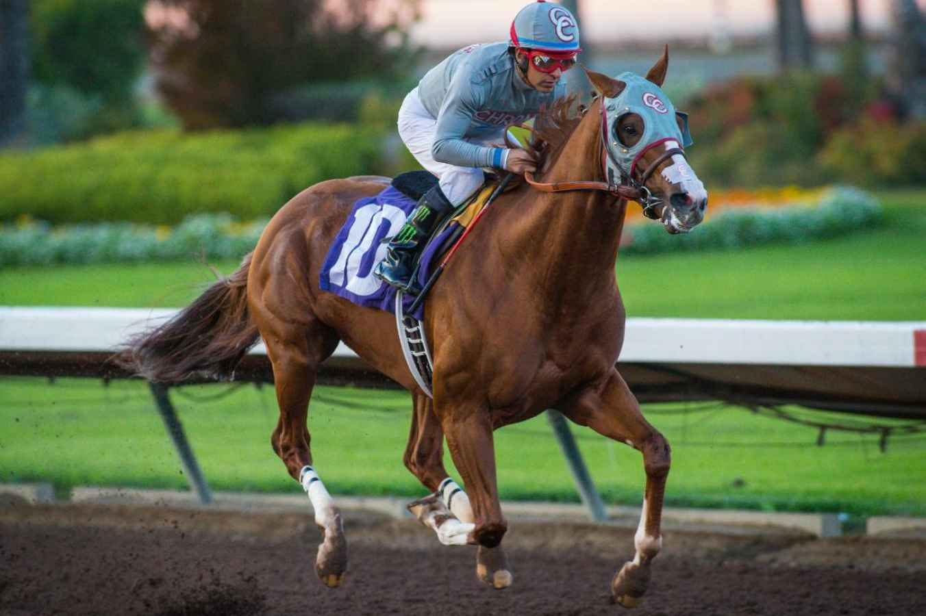 California Chrome Warms Up For Last Start