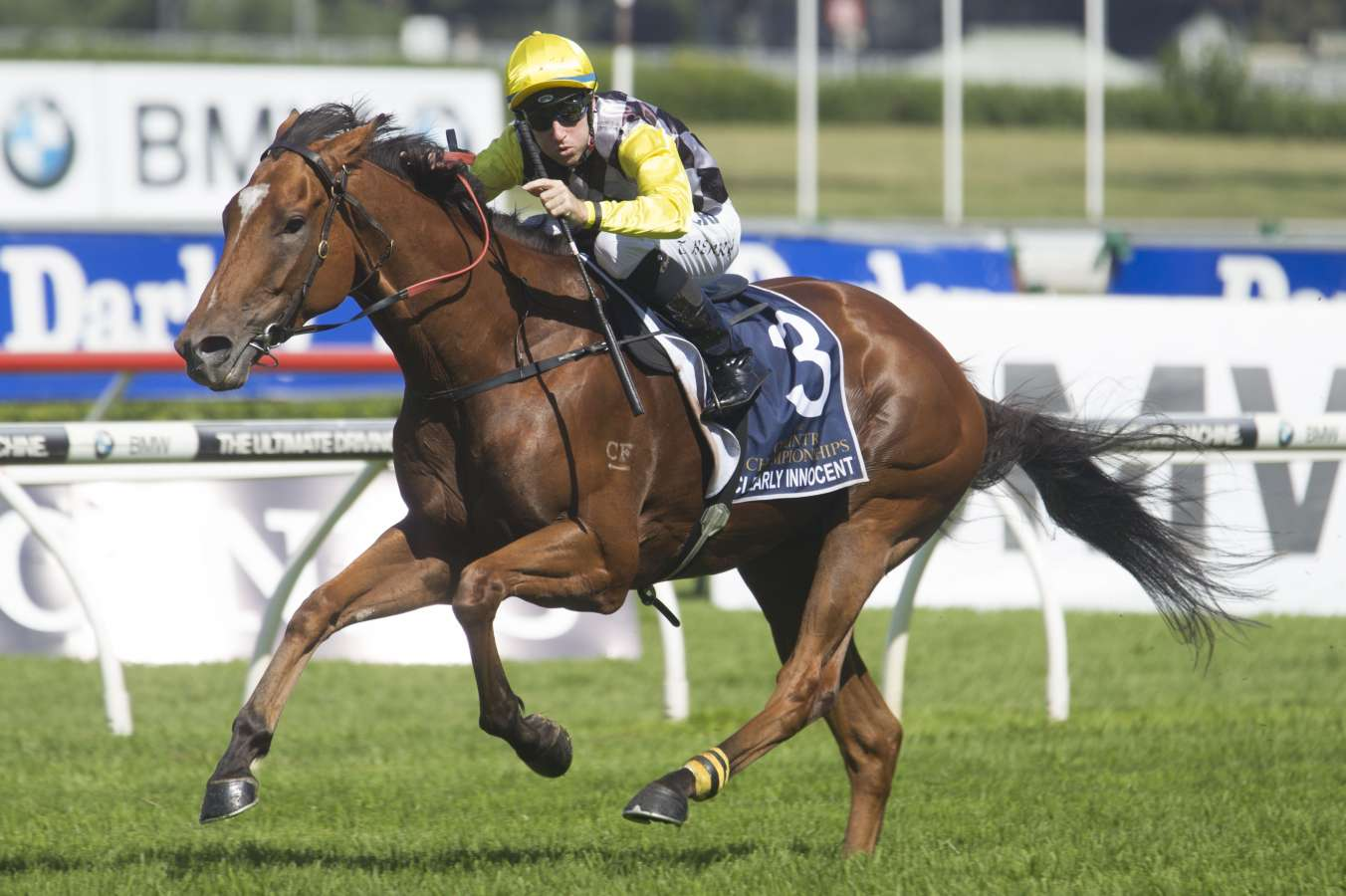 Clearly a case for Stradbroke