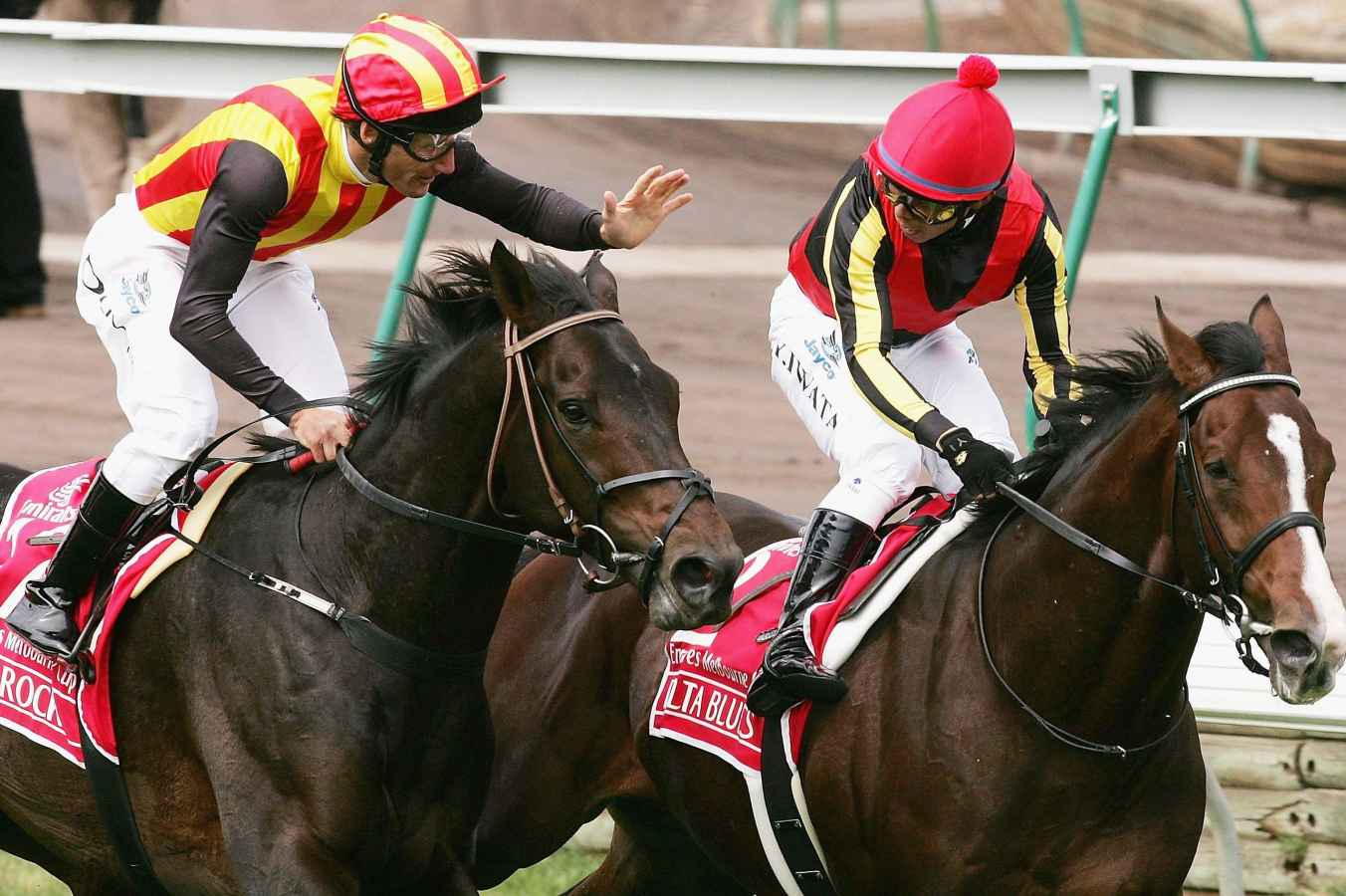 Japanese raider gains momentum for Cup