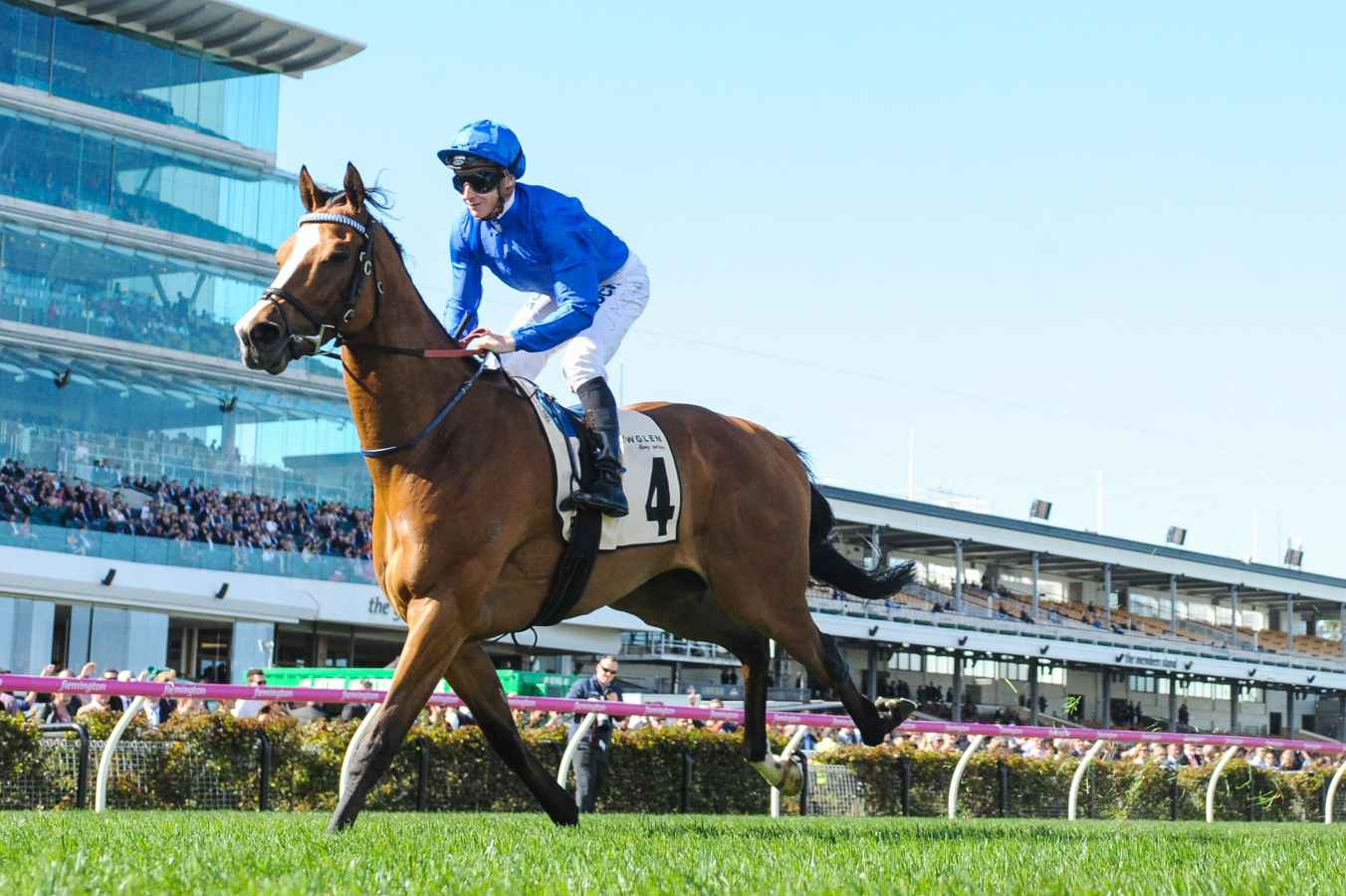 cox plate form guide 2016