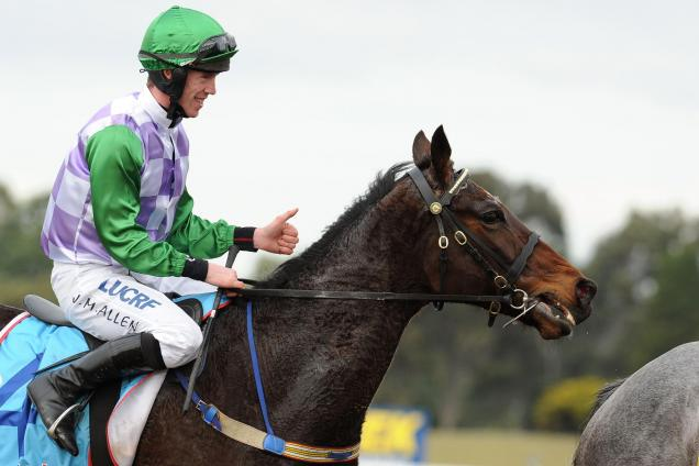 John Allen rides one of the top fancies in the SA Derby