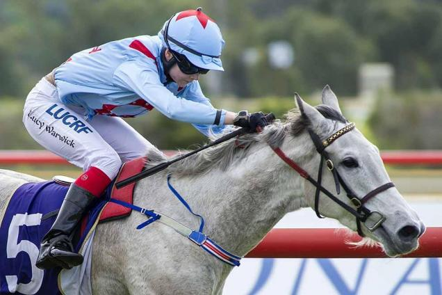 Prolific winners Lucy and 'Lucci'          Photo: Western Racepix
