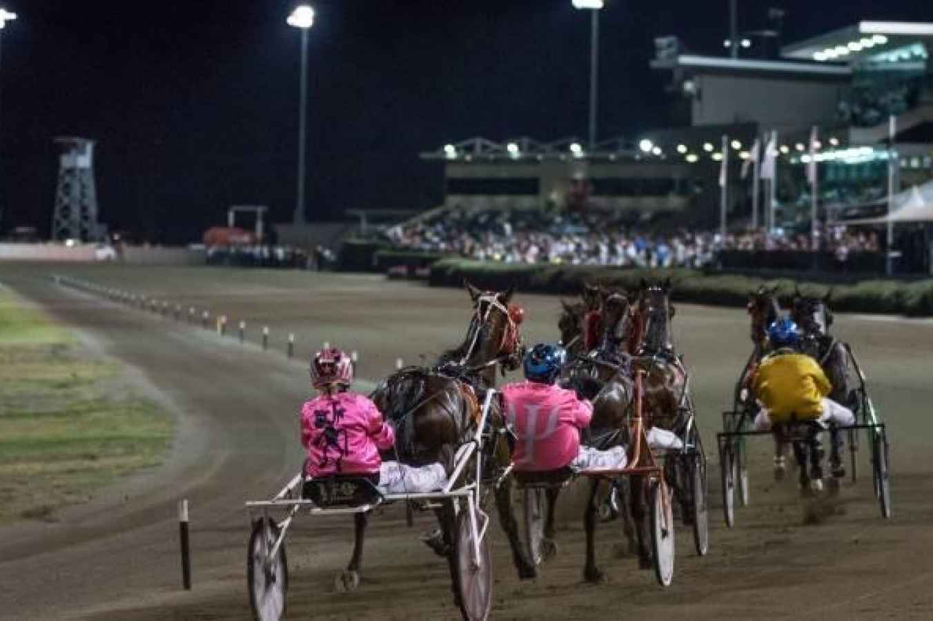 Arrests over alleged trots race fixing
