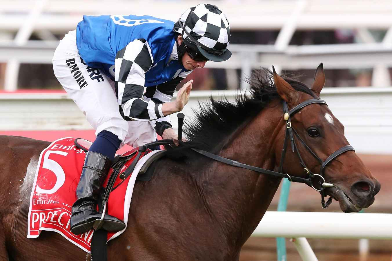 Protectionist topweight in Caulfield Cup