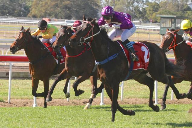 Ruby Ride victorious at Eagle Farm last year